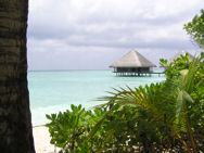 Malediwy 011