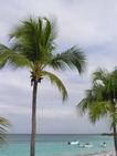 Dominikana 002